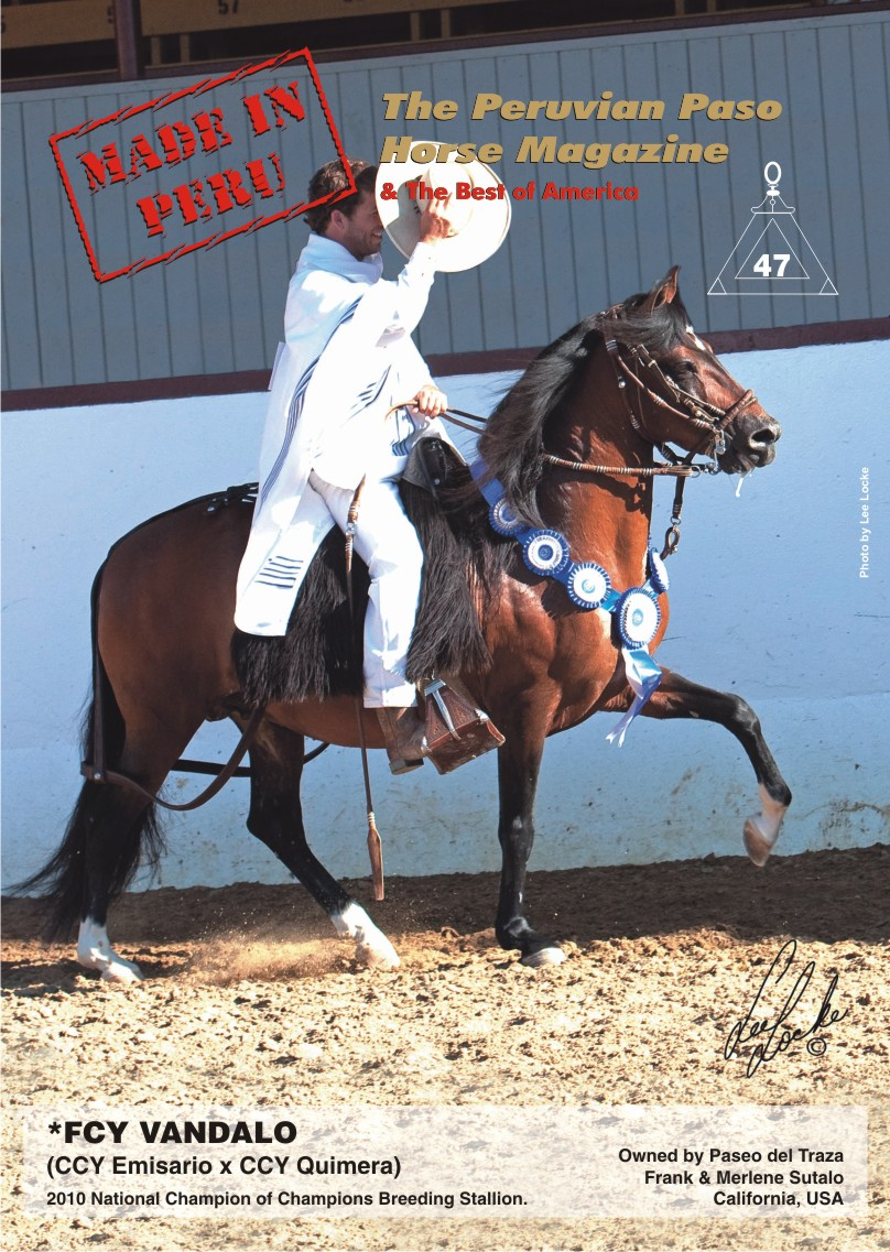 Cover for issue 47