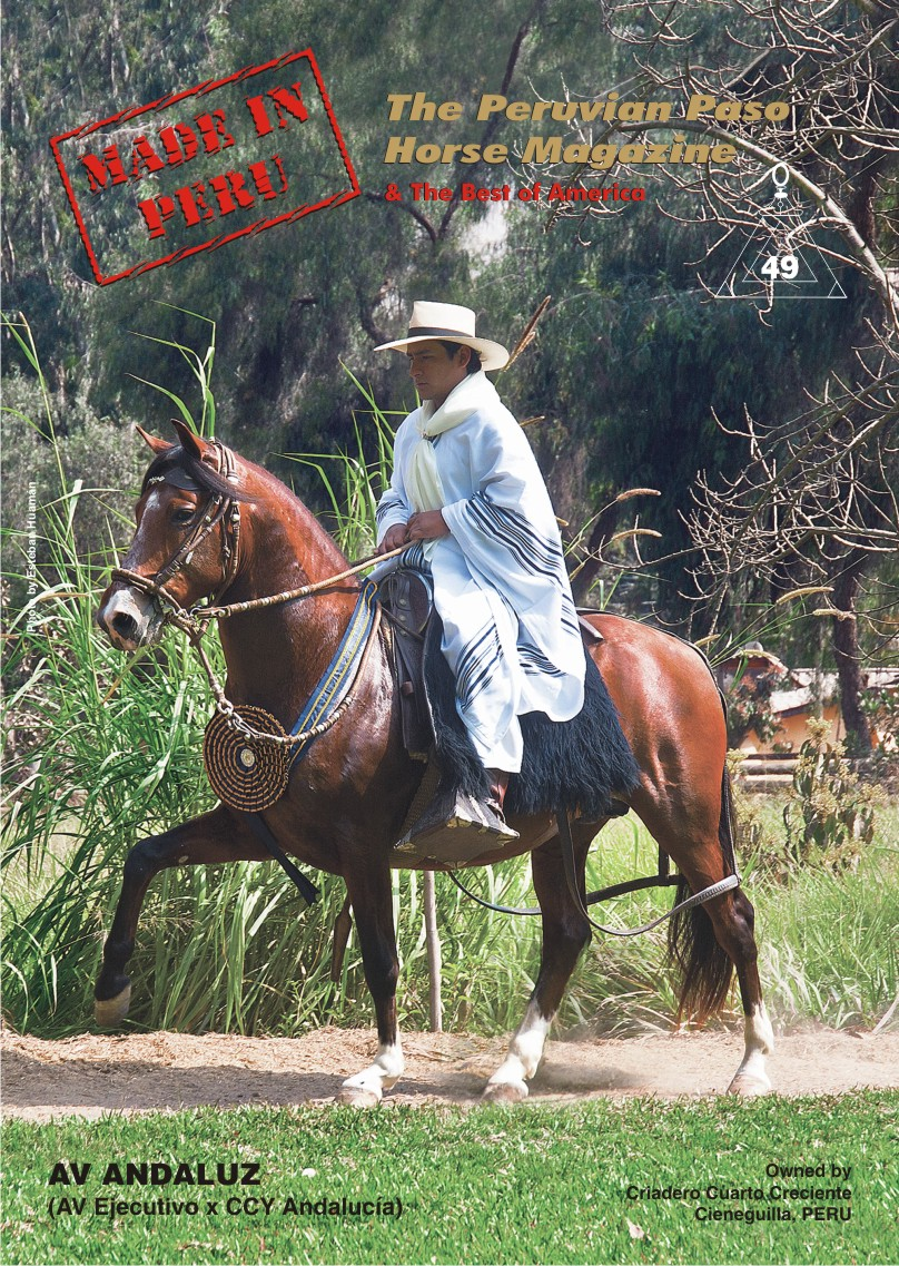 Cover for issue 49